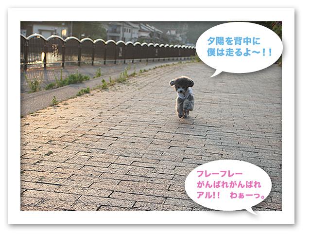 ファイル 123-4.jpg