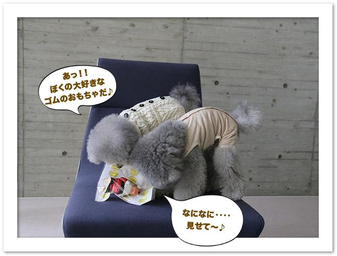ファイル 501-2.jpg