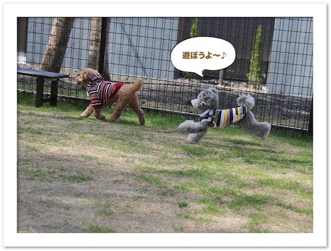 ファイル 533-3.jpg