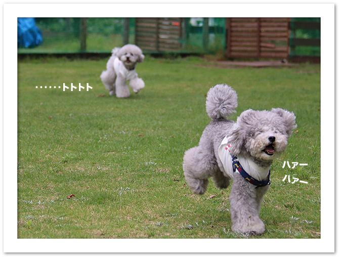ファイル 540-4.jpg
