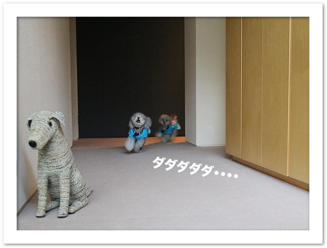 ファイル 541-1.jpg