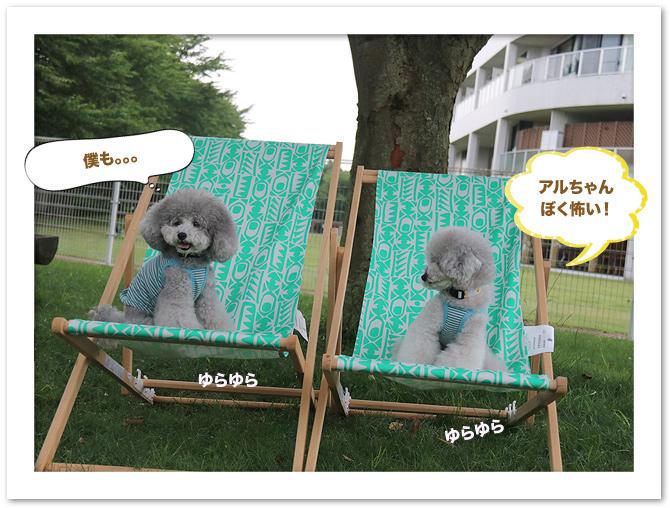 ファイル 543-4.jpg