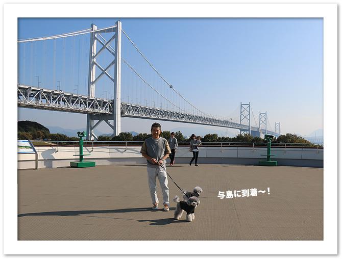 ファイル 553-3.jpg