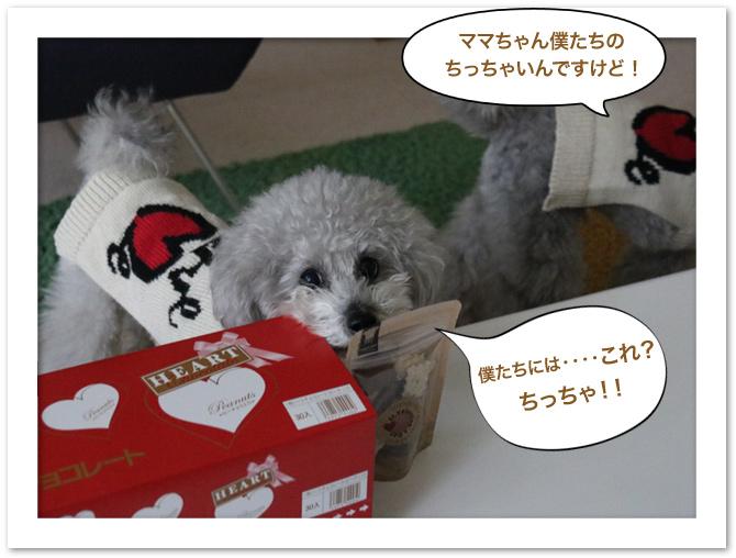 ファイル 569-3.jpg