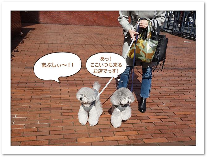 ファイル 572-3.jpg