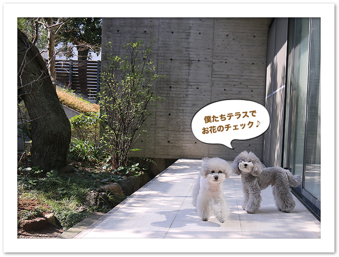 ファイル 579-1.jpg