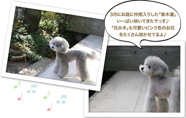 ファイル 579-2.jpg