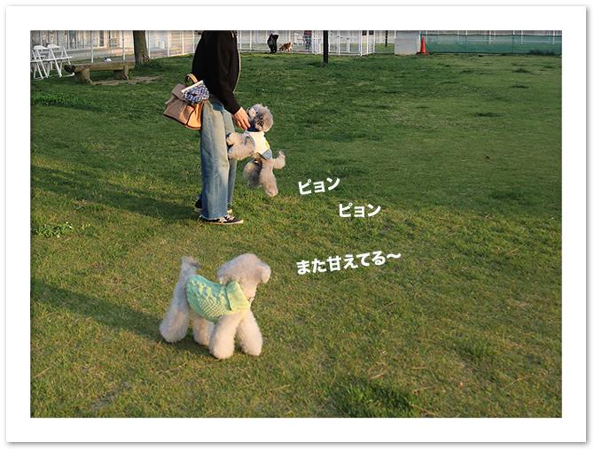 ファイル 582-3.jpg