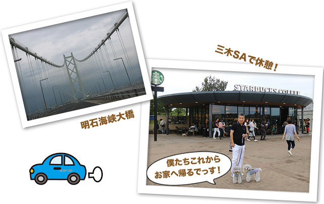 ファイル 598-5.jpg